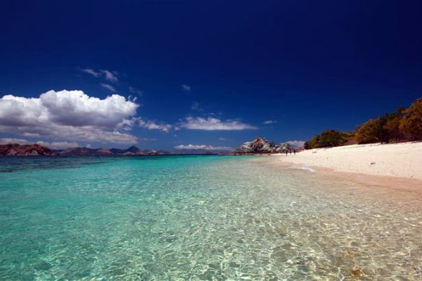Best Labuan Bajo Tours to Book